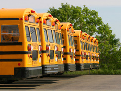 School Bus Strike Looming for New York Schools