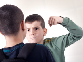 Can Students Be Legally Prosecuted for School Fights?