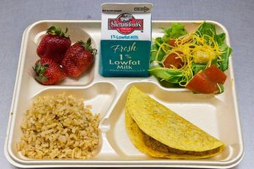 How Much E. Coli is in Public School Lunches?