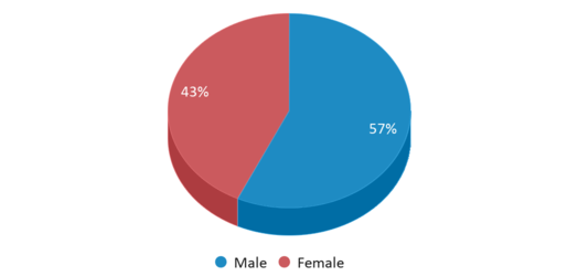 This chart display gender of Edinburgh Community Middle School