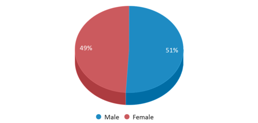 This chart display gender of Whiting Middle School