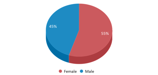 This chart display gender of East Nashville Magnet High School