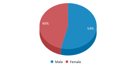 This chart display gender of Thomas W. Bacchus School