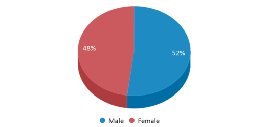 This chart display gender of Canal Street/oak Grove Schools