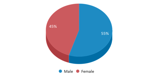 This chart display gender of Du Pont Middle School