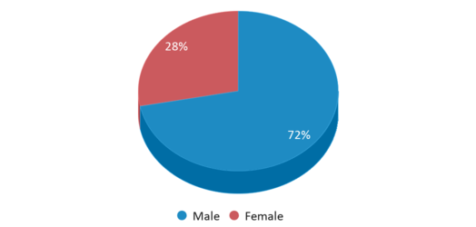 This chart display gender of St Clair County Intervention Academy