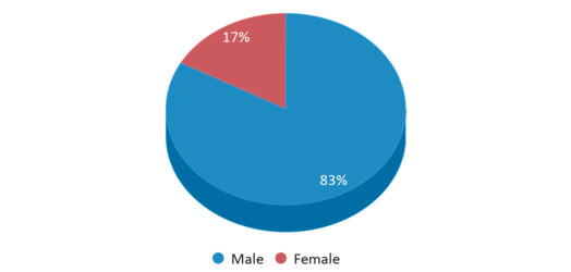 This chart display gender of Bridges At Horace Mann - 52