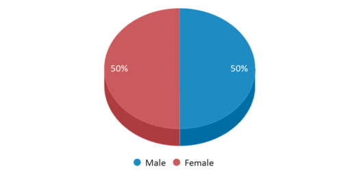 This chart display gender of Cox Mill Elementary School