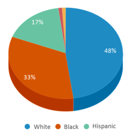 This chart display the percentage breakdown of students of all ethnic groups in Bradley Academy Of Excellence.