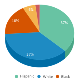 This chart display the percentage breakdown of students of all ethnic groups in Sessums Elementary School.