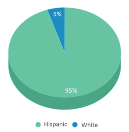 This chart display the percentage breakdown of students of all ethnic groups in California Elementary School.