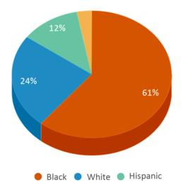 This chart display the percentage breakdown of students of all ethnic groups in Graduation Achievement Center Charter High School.