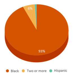 This chart display the percentage breakdown of students of all ethnic groups in Thurgood Marshall Leadership Academy.