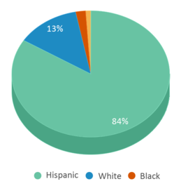 This chart display the percentage breakdown of students of all ethnic groups in Ortiz Elementary School.