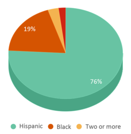 This chart display the percentage breakdown of students of all ethnic groups in Aspire College Academy.