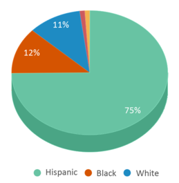 This chart display the percentage breakdown of students of all ethnic groups in Van Sickle Academy.