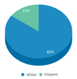 This chart display the percentage breakdown of students of all ethnic groups in Peak High School.