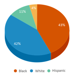 This chart display the percentage breakdown of students of all ethnic groups in Coatesville Area Sd Cyber Academy.