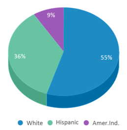 This chart display the percentage breakdown of students of all ethnic groups in Arlington Open Doors.