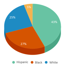 This chart display the percentage breakdown of students of all ethnic groups in Frederick Douglass School 19.