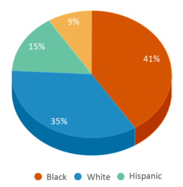 This chart display the percentage breakdown of students of all ethnic groups in Oaklandon Elementary School.