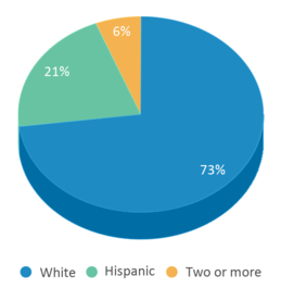 This chart display the percentage breakdown of students of all ethnic groups in Monon Elementary School.