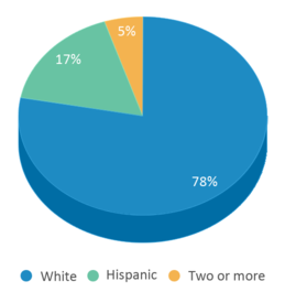 This chart display the percentage breakdown of students of all ethnic groups in Meadowlawn Elementary School.