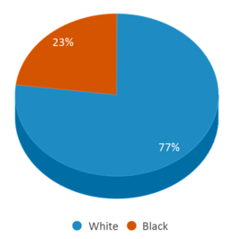 This chart display the percentage breakdown of students of all ethnic groups in Cardinal Treatment Center Alternative School.