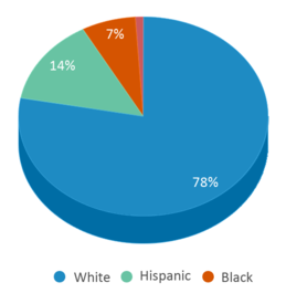 This chart display the percentage breakdown of students of all ethnic groups in Jewett Elementary School.