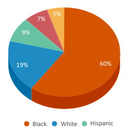 This chart display the percentage breakdown of students of all ethnic groups in Yorktown Elementary School.