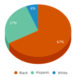 This chart display the percentage breakdown of students of all ethnic groups in Margaret Brent Regional Center.