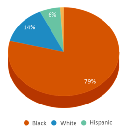 This chart display the percentage breakdown of students of all ethnic groups in Innovative Learning Center.