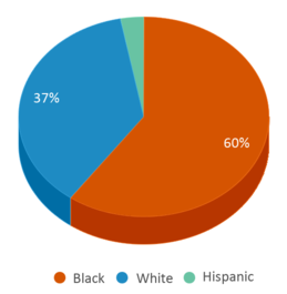 This chart display the percentage breakdown of students of all ethnic groups in Lamar High School.