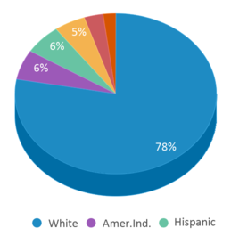 This chart display the percentage breakdown of students of all ethnic groups in Simmons Elementary - 10.