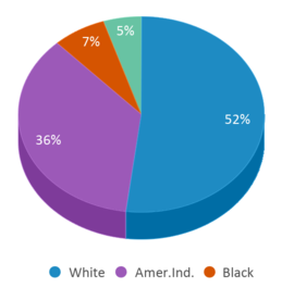 This chart display the percentage breakdown of students of all ethnic groups in Woodfield Center.