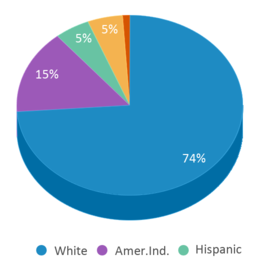 This chart display the percentage breakdown of students of all ethnic groups in Grandview Elementary - 06.