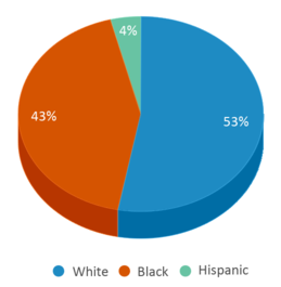 This chart display the percentage breakdown of students of all ethnic groups in Somerville Elementary School.