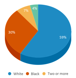 This chart display the percentage breakdown of students of all ethnic groups in Ralph Askins School.