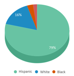 This chart display the percentage breakdown of students of all ethnic groups in Calk-wilson Elementary School.