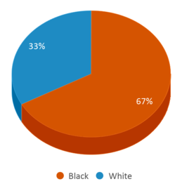 This chart display the percentage breakdown of students of all ethnic groups in Pineywoods Aec Of Choice.
