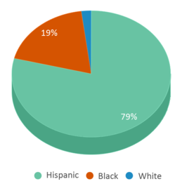 This chart display the percentage breakdown of students of all ethnic groups in Furr High School.