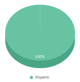 This chart display the percentage breakdown of students of all ethnic groups in Eligio Kika De La Garza Elementary School.