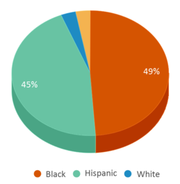 This chart display the percentage breakdown of students of all ethnic groups in W W White Elementary School.