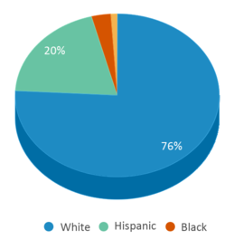 This chart display the percentage breakdown of students of all ethnic groups in West Middle School.