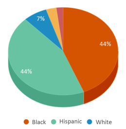 This chart display the percentage breakdown of students of all ethnic groups in Falling Creek Middle School.