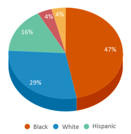 This chart display the percentage breakdown of students of all ethnic groups in Hermitage High School.