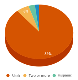 This chart display the percentage breakdown of students of all ethnic groups in Discovery Stem Academy.