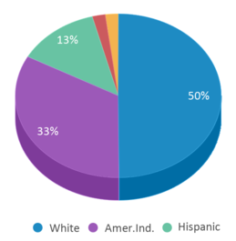 This chart display the percentage breakdown of students of all ethnic groups in La Conner High School.