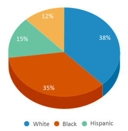 This chart display the percentage breakdown of students of all ethnic groups in Prairie Phoenix Academy.