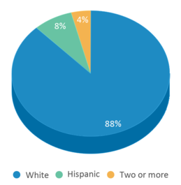 This chart display the percentage breakdown of students of all ethnic groups in Wilmot High School.